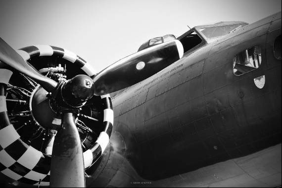 Photo sur aluminium Sally B