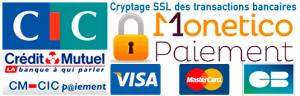 paiement monetico credit mutuel visa mastercard